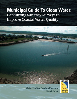 Publication cover: Municipal Guide to Clean Water