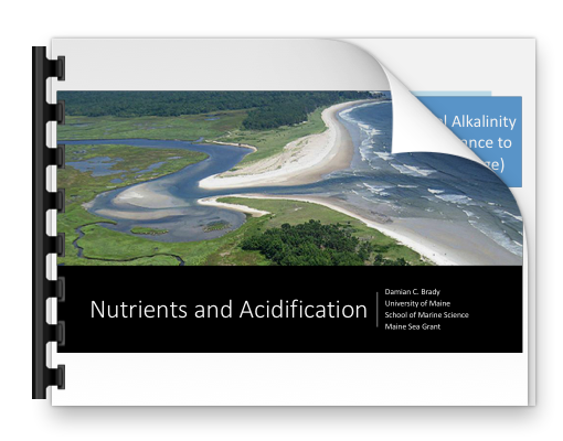 Brady Presentation on Nutrients and Acidification