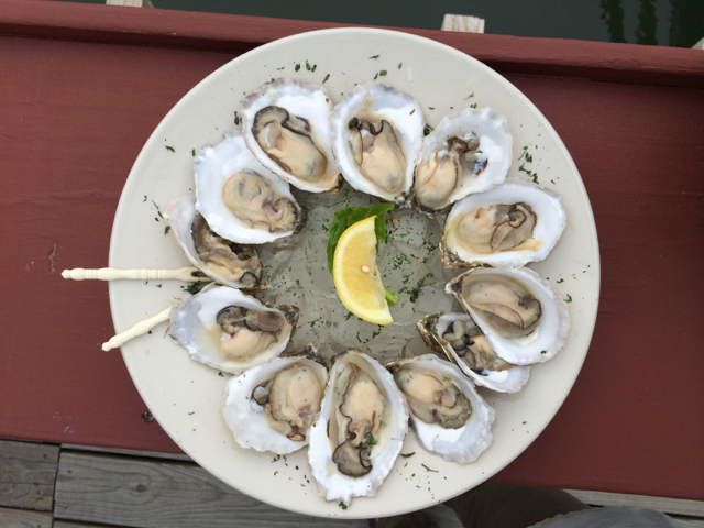 a plate of oysters arranged in a circle