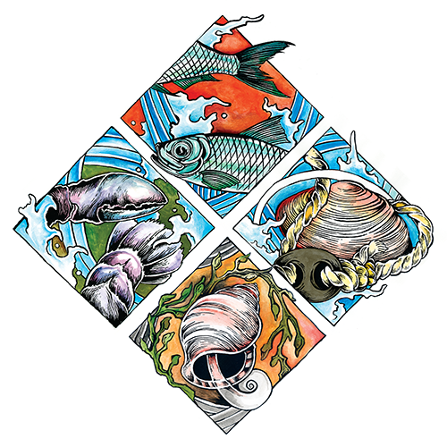 image link to the downeast fisheries trail