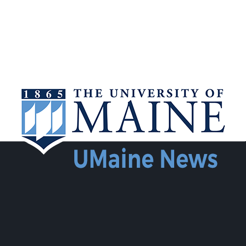 University of Maine News button