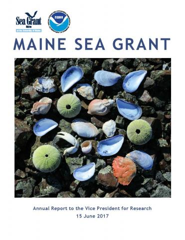 Cover of report featuring urchins and mussel shells arranged in a square on rocky beach.