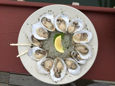 A plate of oysters arranged in a circle.
